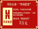 【增值服务奖3万元】--华西集团模架事业部伟德官网app项目 国企混改与股权激励