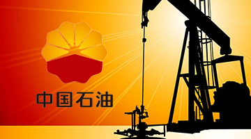 【中国石油】【人力资源内控体系】-成都管理伟德官网app公司